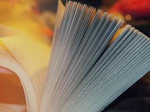 Traducir textos y sitios web: Libro semiabierto